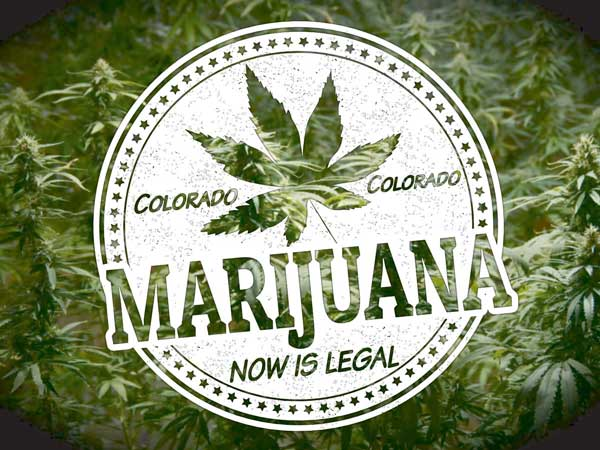 Best Colorado Legal Weed Seed Bank