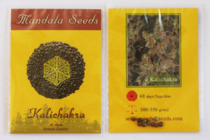 Mandala Seeds packets