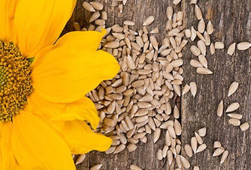 Sunflower seeds are high in healthy fats, as well as: proteins, fiber, phytochemicals, selenium, copper, and magnesium.