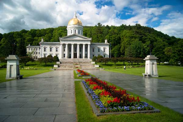 Vermont Cannabis Seed Bank