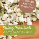 shelling hemp seeds pin