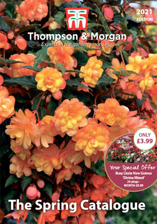Our Latest Catalogue