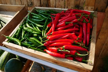 Can You Plant Seeds Right Out of a Jalapeno Pepper?